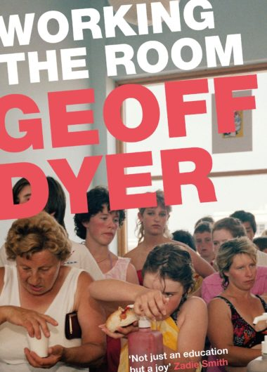 Working the Room: Essays and Reviews 1999-2010